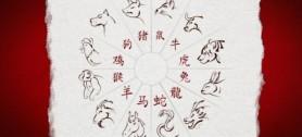 horoskop dohazování online